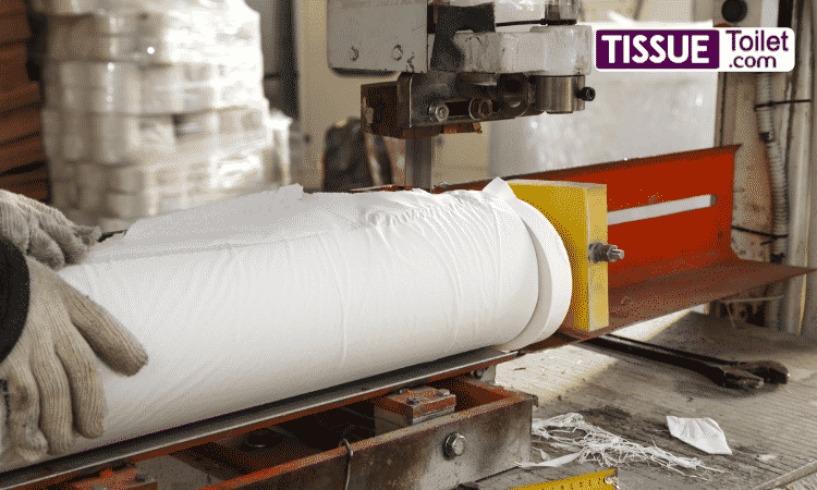 How Is Toilet tissue Made in factory